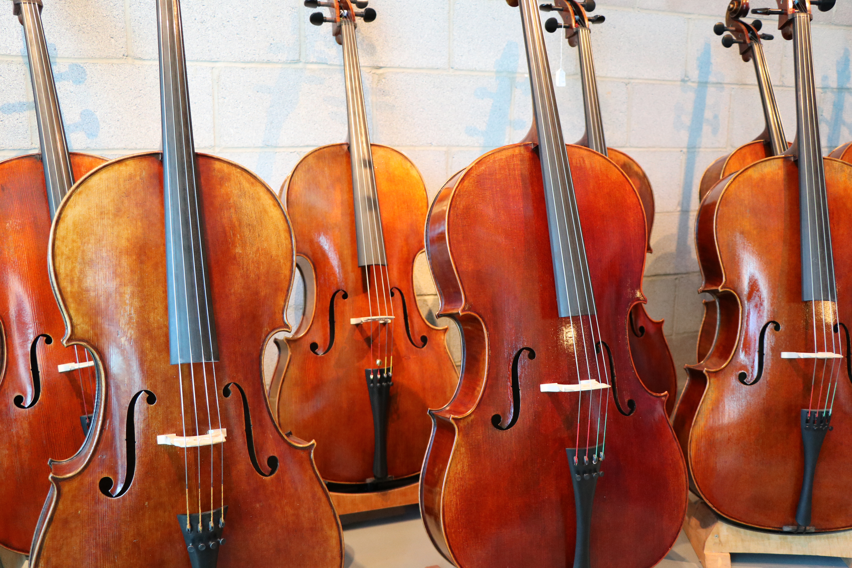Y. Chen Cellos